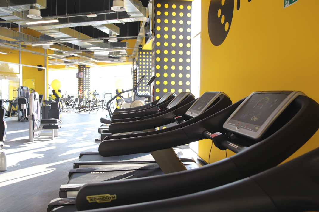 Fit Express Franchising Fitness Palestre
