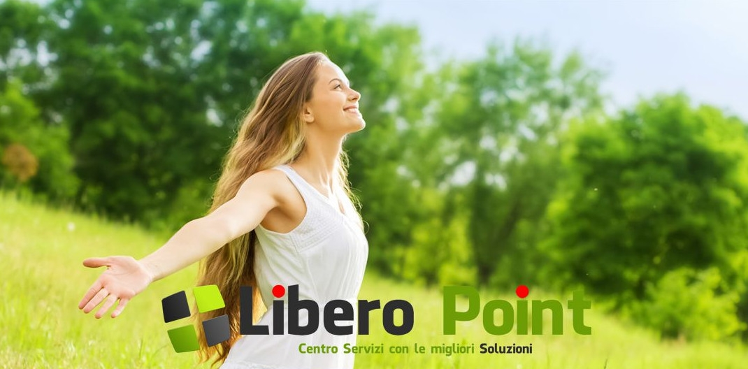 franchising libero point