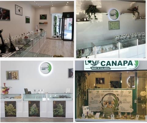 Franchising Love Canapa